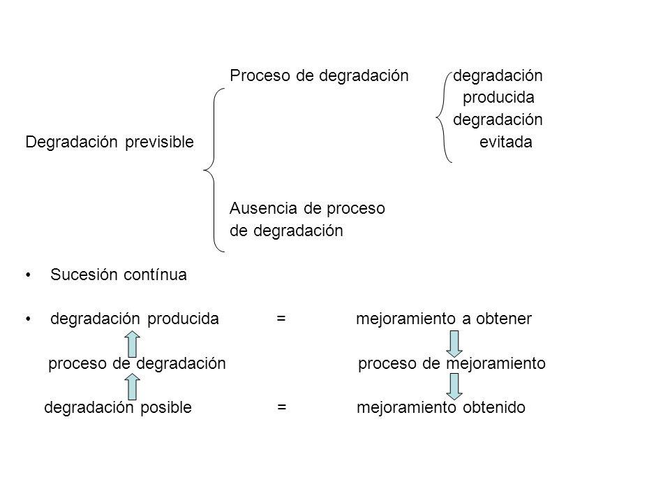Proceso de degradación degradación