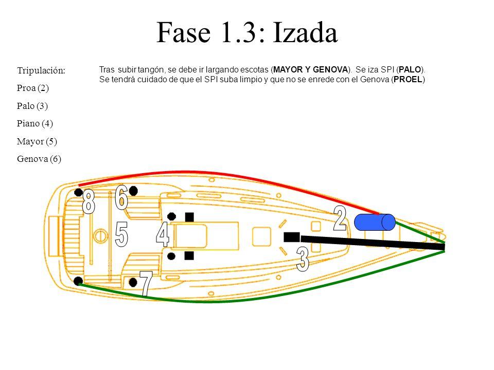 Fase 1.3: Izada 6 8 2 5 4 3 7 Tripulación: Proa (2) Palo (3)
