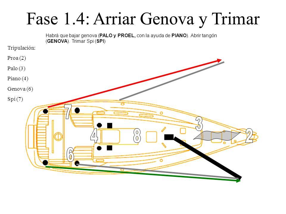 Fase 1.4: Arriar Genova y Trimar