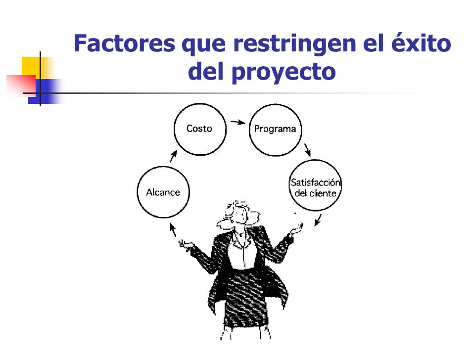 Factores que restringen el éxito del proyecto