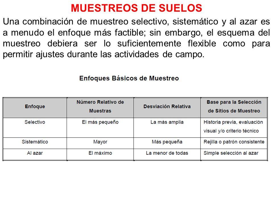 MUESTREOS DE SUELOS