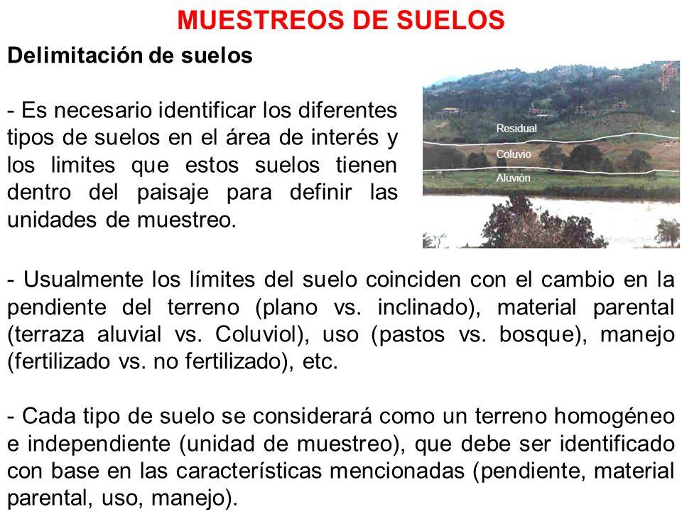 MUESTREOS DE SUELOS Delimitación de suelos