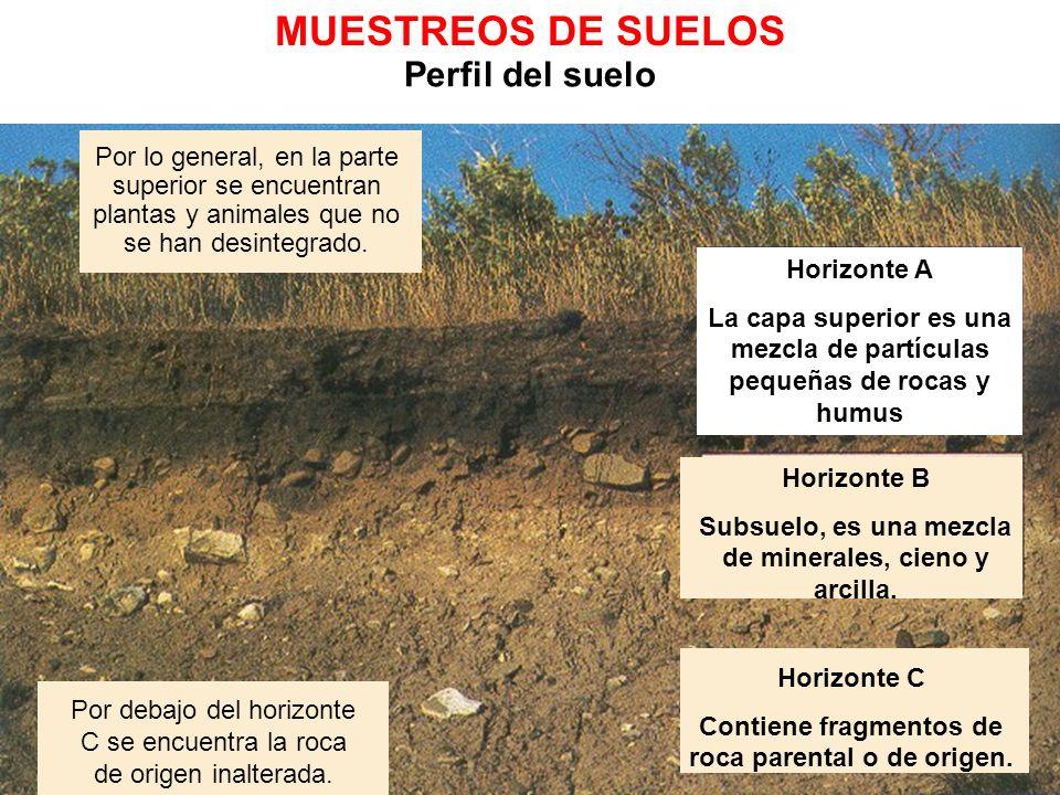 MUESTREOS DE SUELOS Perfil del suelo