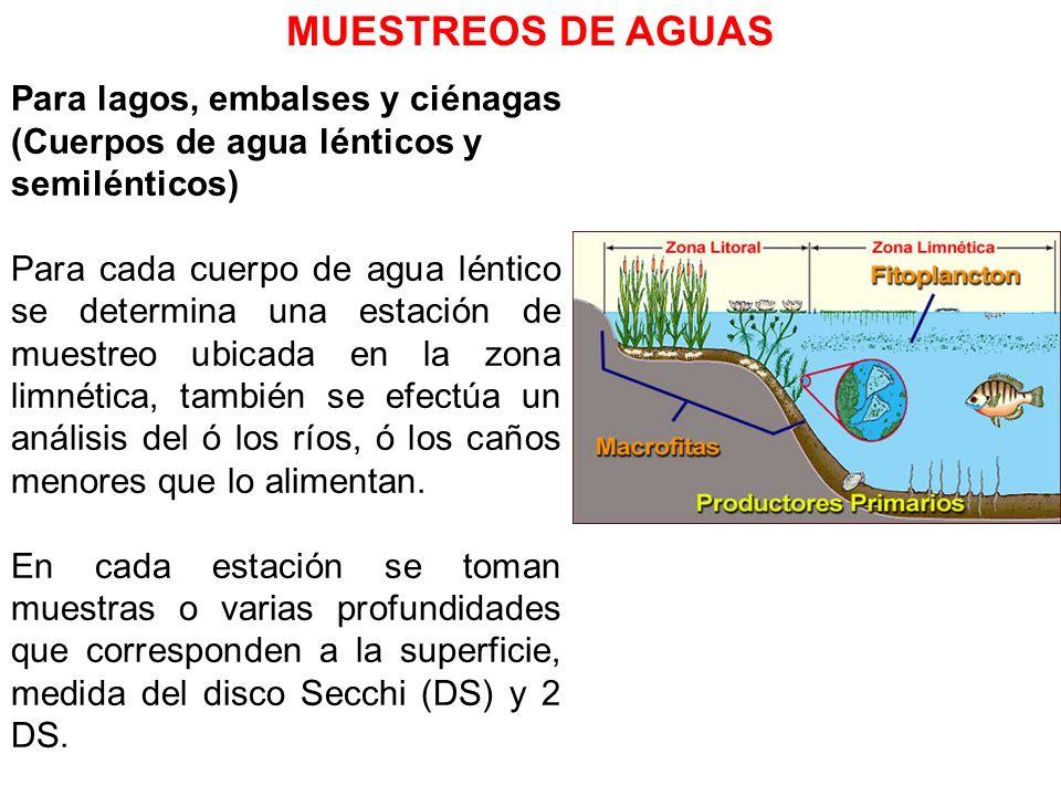 MUESTREOS DE AGUASPara lagos, embalses y ciénagas (Cuerpos de agua lénticos y semilénticos)
