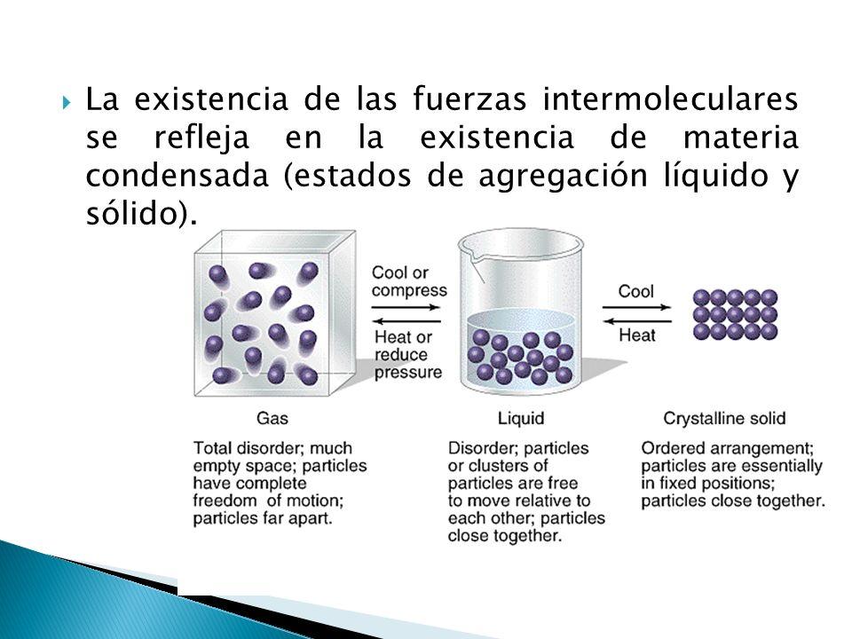 Único Estados De La Materia Y Las Fuerzas Intermoleculares Hoja De ...