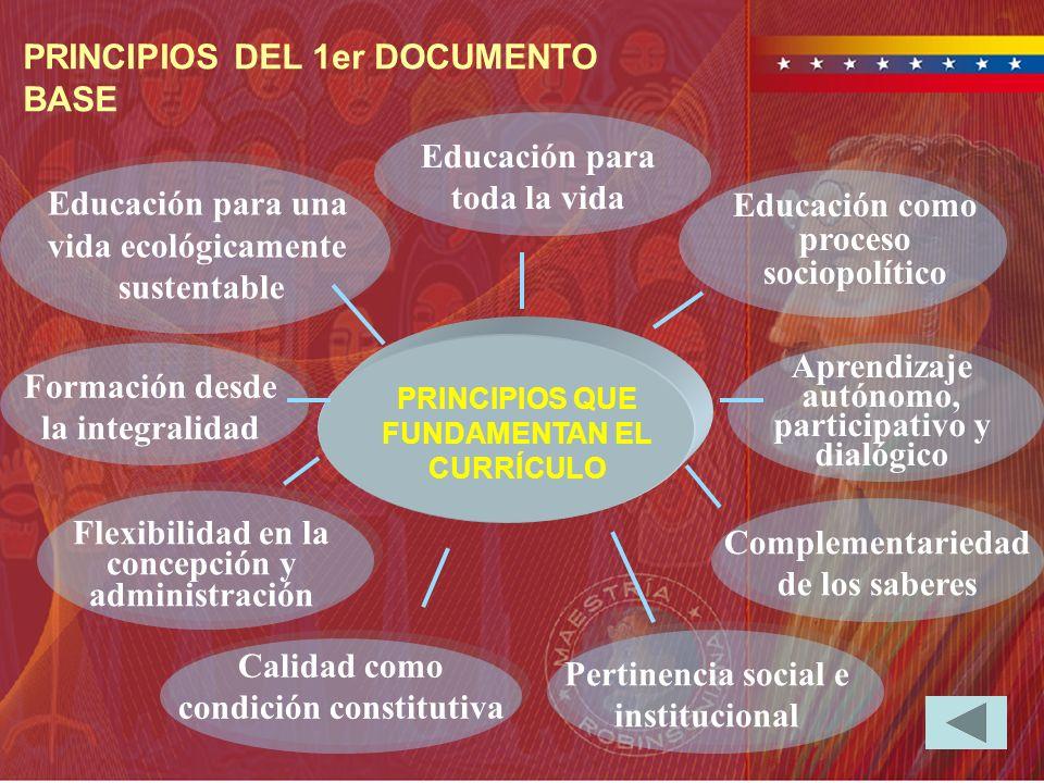 PRINCIPIOS DEL 1er DOCUMENTO BASE