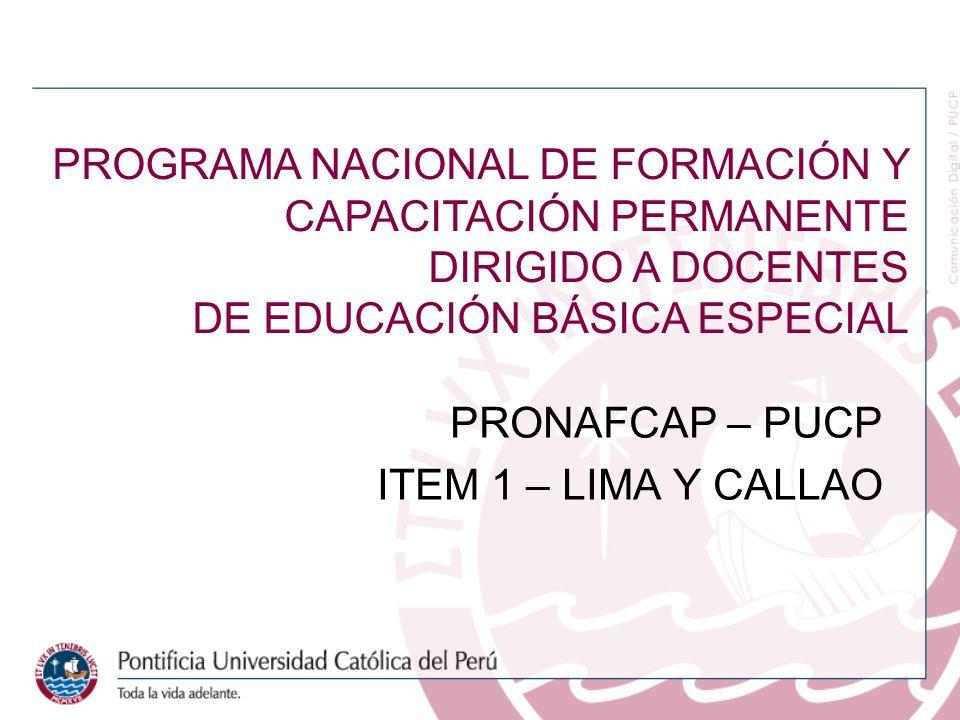 PRONAFCAP – PUCP ITEM 1 – LIMA Y CALLAO