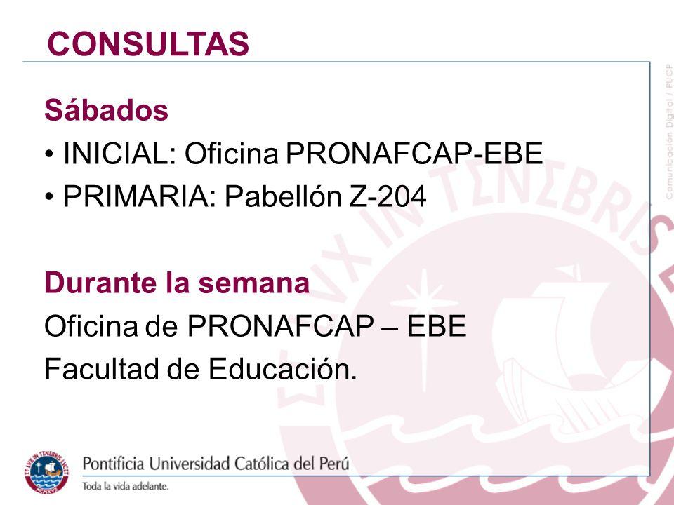CONSULTAS Sábados INICIAL: Oficina PRONAFCAP-EBE