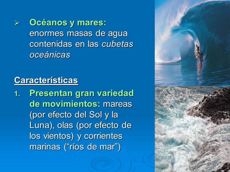 Océanos y mares: enormes masas de agua contenidas en las cubetas oceánicas