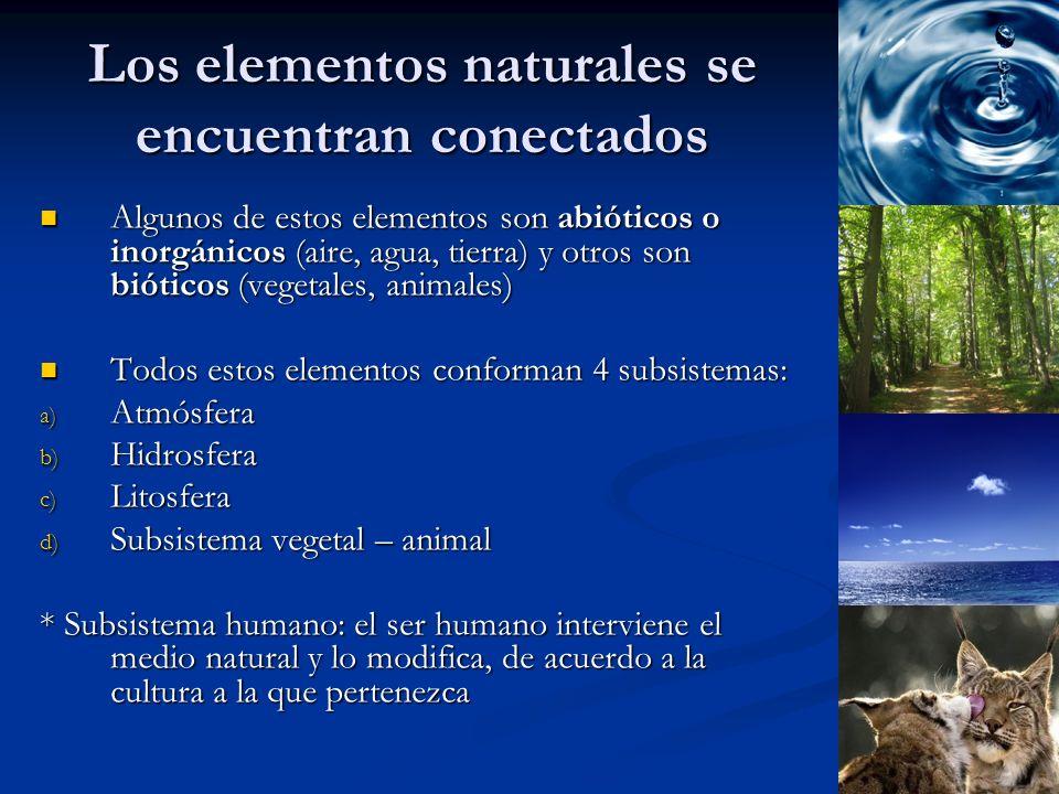 Los elementos naturales se encuentran conectados