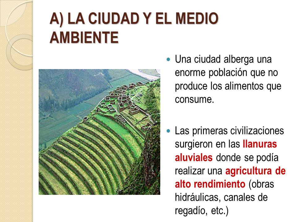 A) LA CIUDAD Y EL MEDIO AMBIENTE