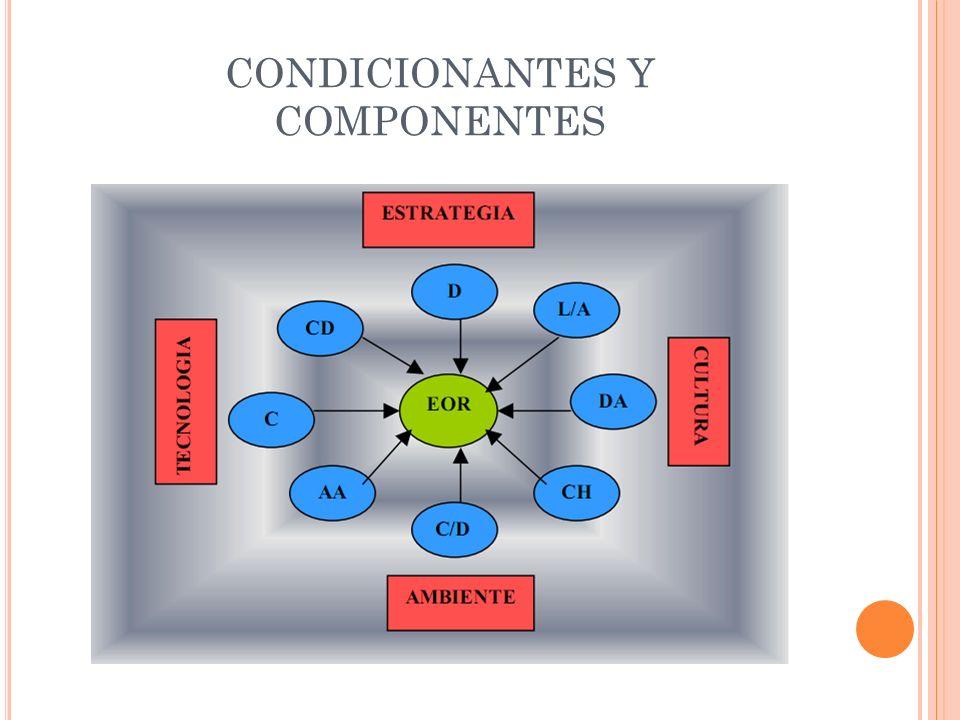 CONDICIONANTES Y COMPONENTES
