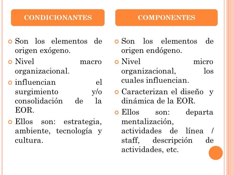 Son los elementos de origen exógeno. Nivel macro organizacional.
