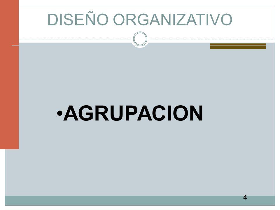 DISEÑO ORGANIZATIVO AGRUPACION