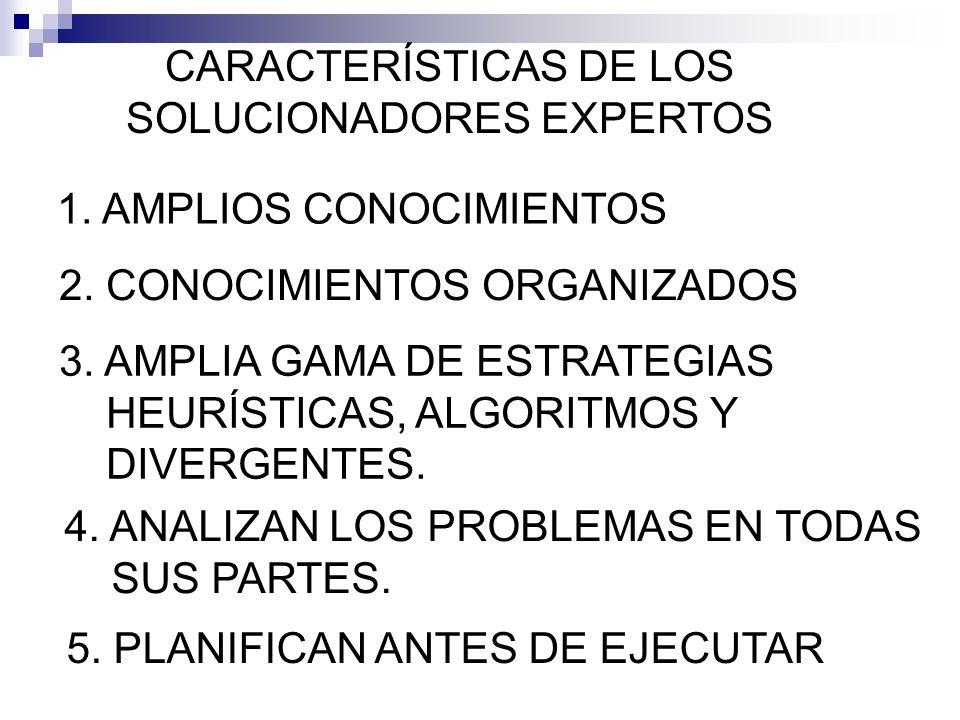 CARACTERÍSTICAS DE LOS SOLUCIONADORES EXPERTOS