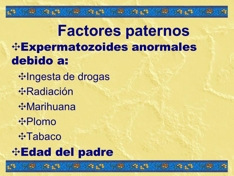 Factores paternos Expermatozoides anormales debido a: Edad del padre