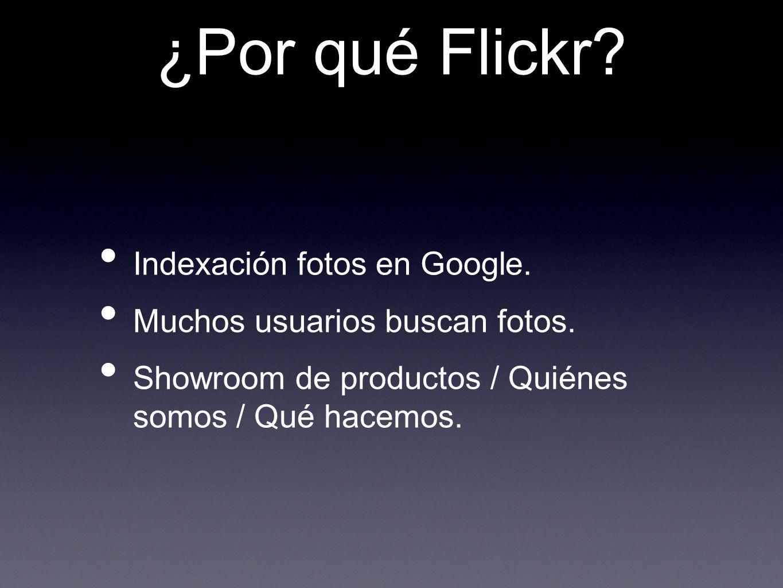 ¿Por qué Flickr Indexación fotos en Google.