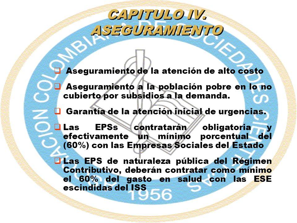 CAPITULO IV. ASEGURAMIENTO