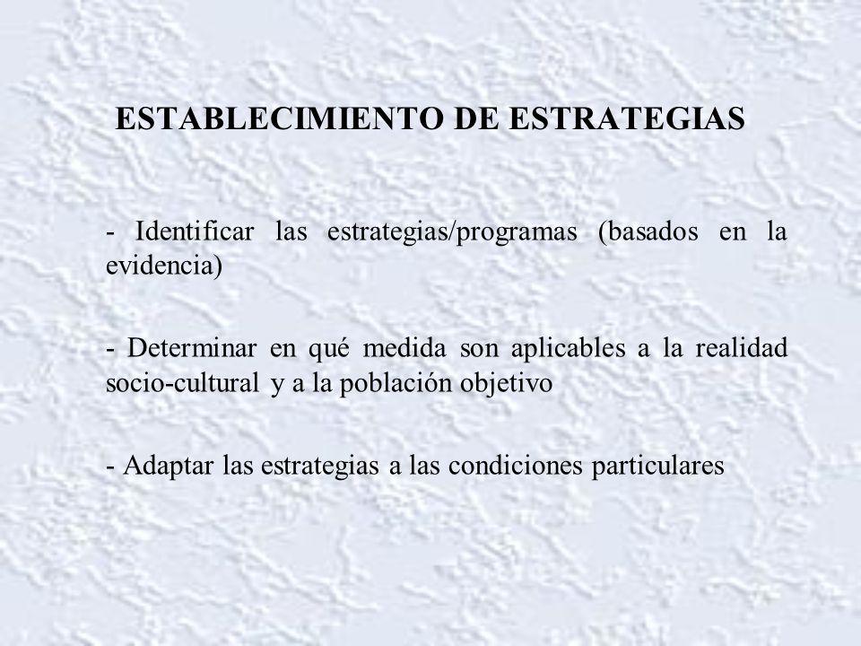 ESTABLECIMIENTO DE ESTRATEGIAS