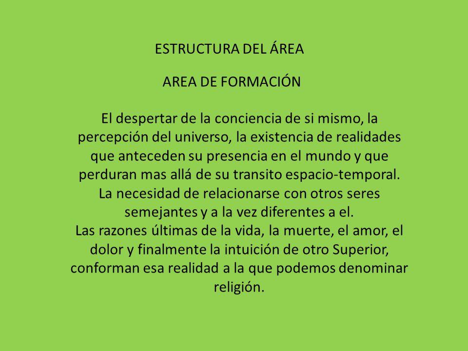 ESTRUCTURA DEL ÁREA AREA DE FORMACIÓN.