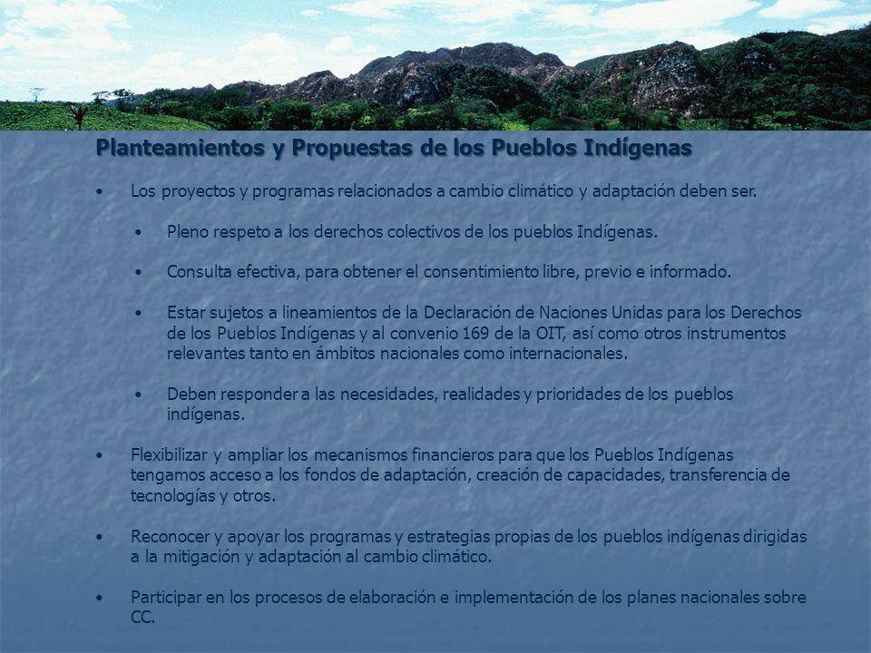 Planteamientos y Propuestas de los Pueblos Indígenas
