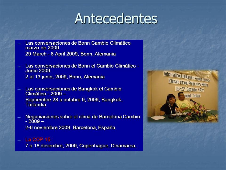 Antecedentes Las conversaciones de Bonn Cambio Climático marzo de 2009