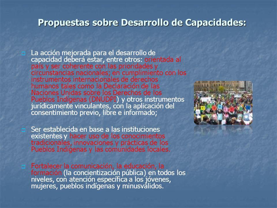 Propuestas sobre Desarrollo de Capacidades: