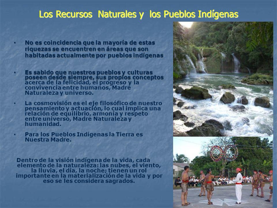 Los Recursos Naturales y los Pueblos Indígenas