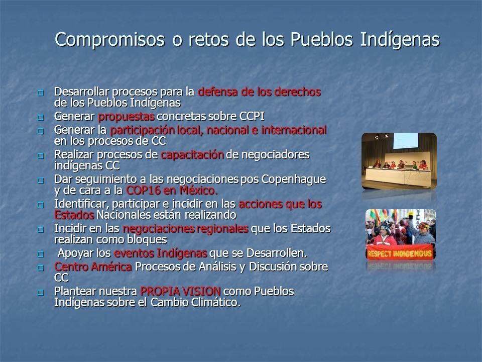 Compromisos o retos de los Pueblos Indígenas