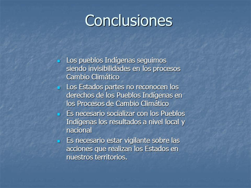 Conclusiones Los pueblos Indígenas seguimos siendo invisibilidades en los procesos Cambio Climático.