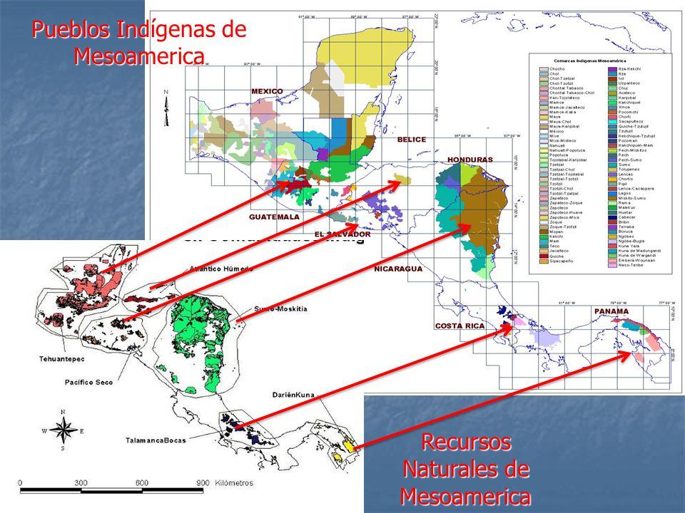 Pueblos Indígenas de Mesoamerica