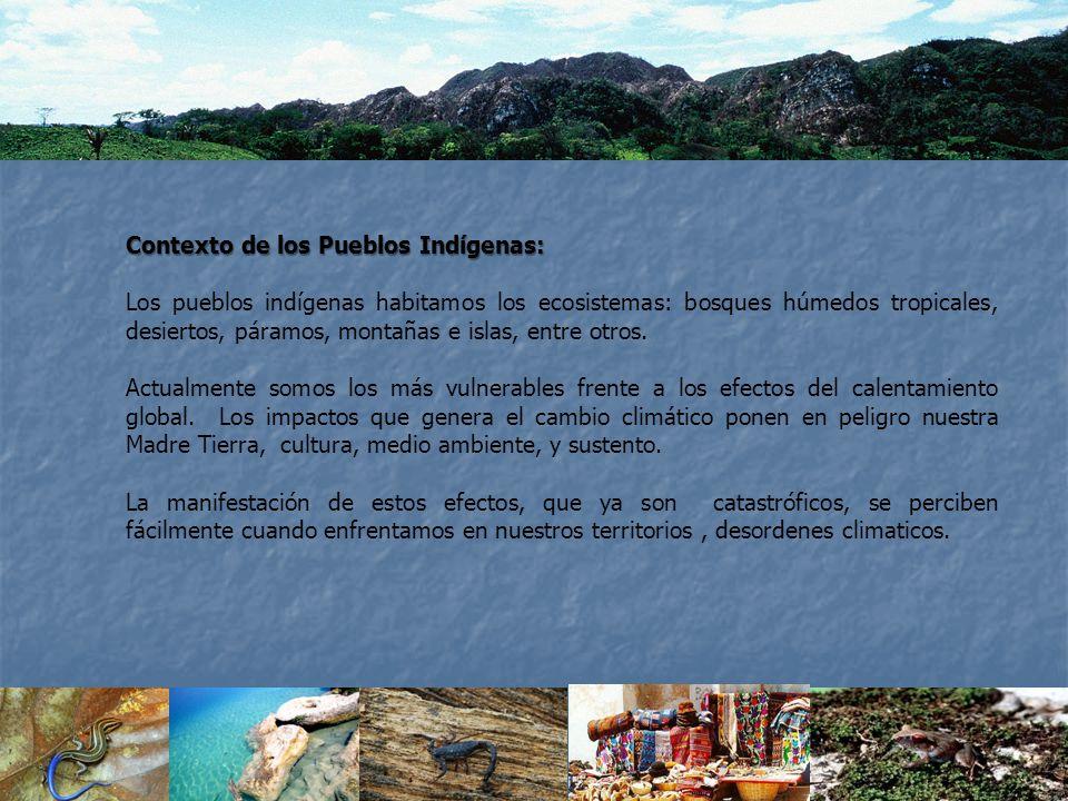 Contexto de los Pueblos Indígenas: