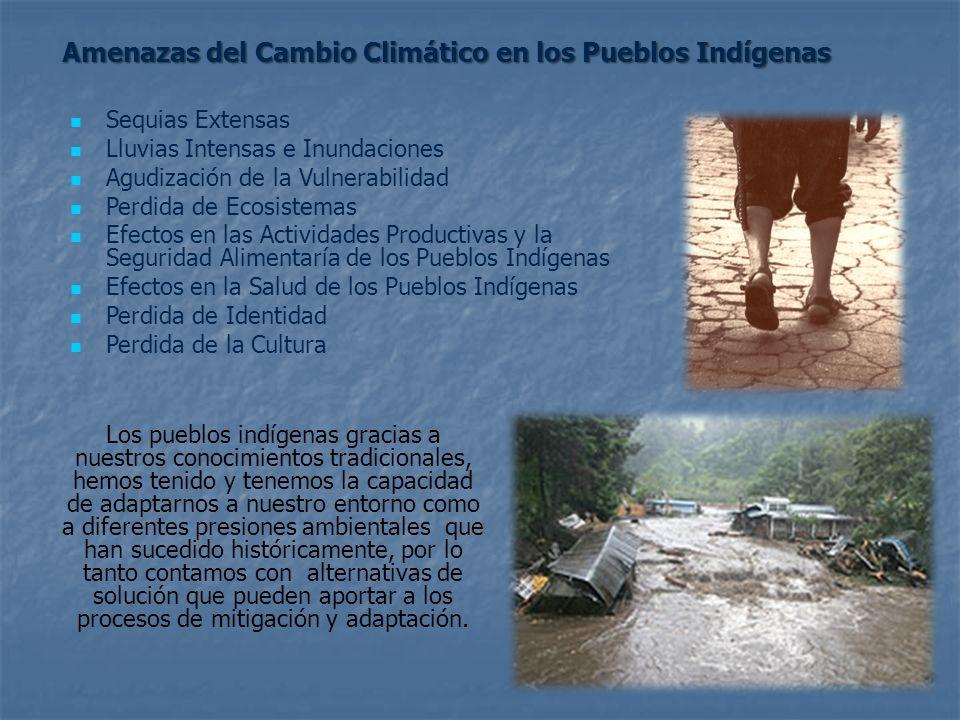 Amenazas del Cambio Climático en los Pueblos Indígenas