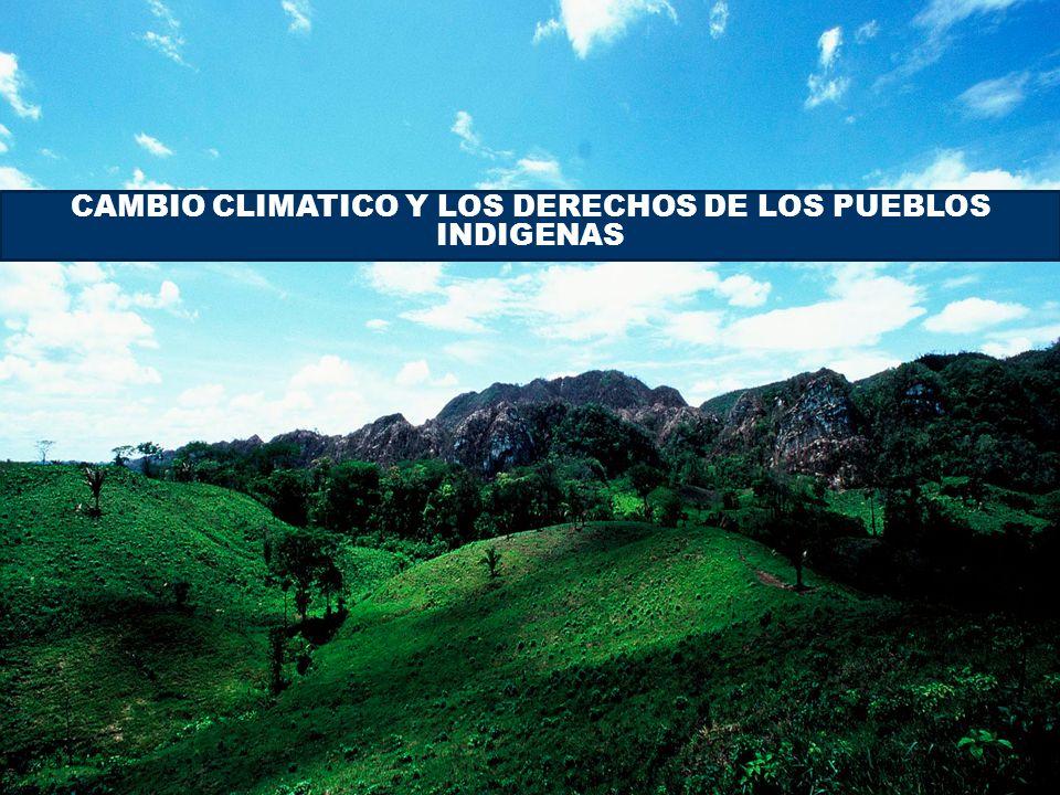 CAMBIO CLIMATICO Y LOS DERECHOS DE LOS PUEBLOS INDIGENAS