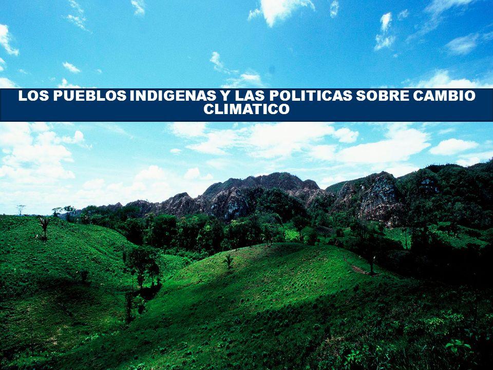 LOS PUEBLOS INDIGENAS Y LAS POLITICAS SOBRE CAMBIO CLIMATICO