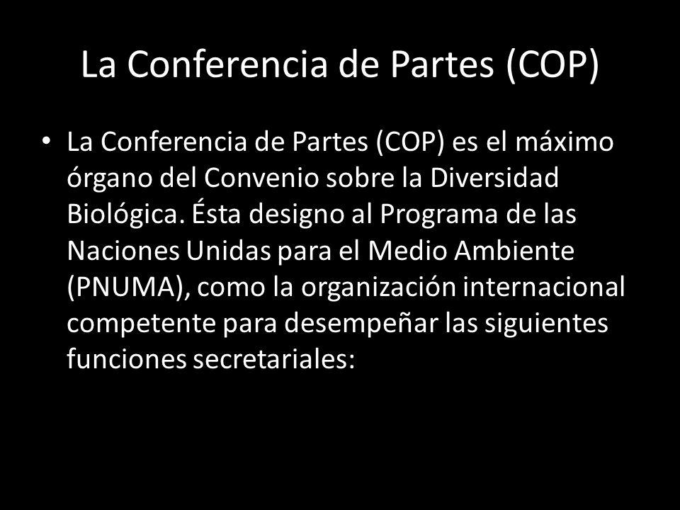 La Conferencia de Partes (COP)