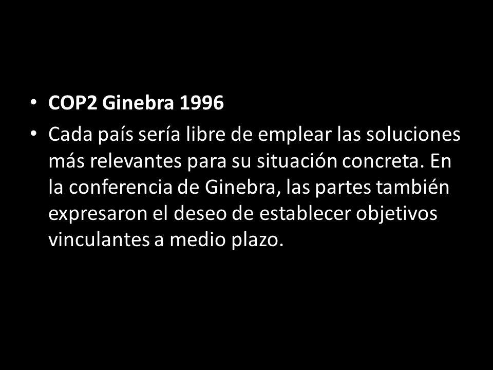 COP2 Ginebra 1996