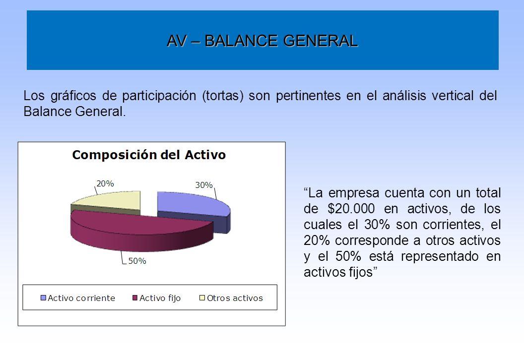 AV – BALANCE GENERAL Los gráficos de participación (tortas) son pertinentes en el análisis vertical del Balance General.