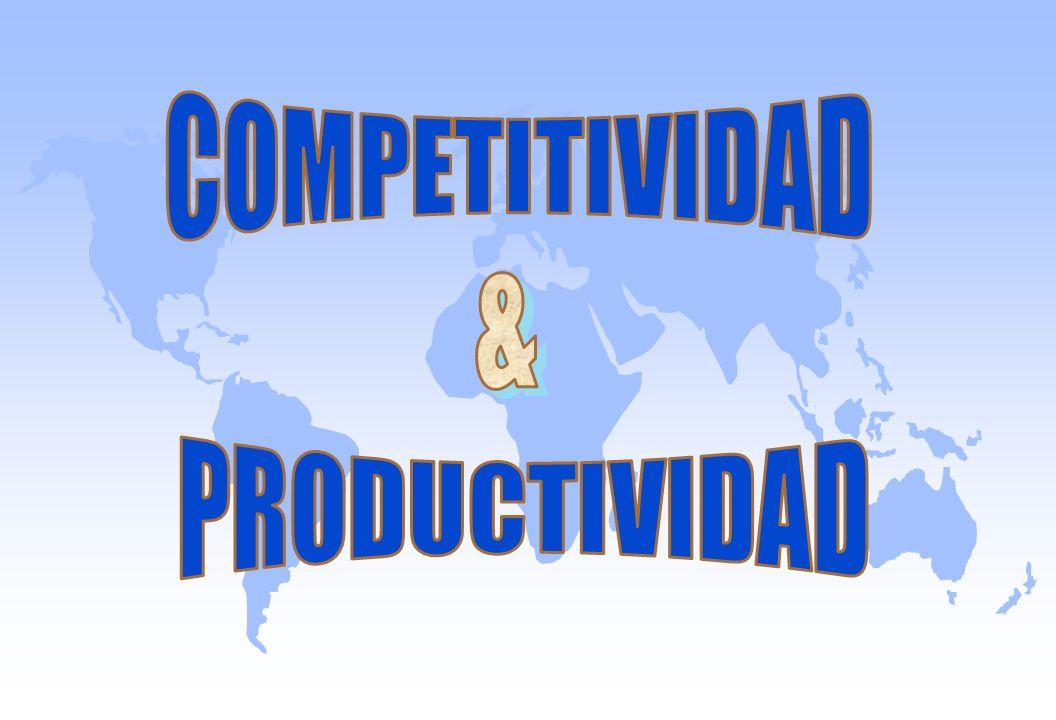 COMPETITIVIDAD & PRODUCTIVIDAD