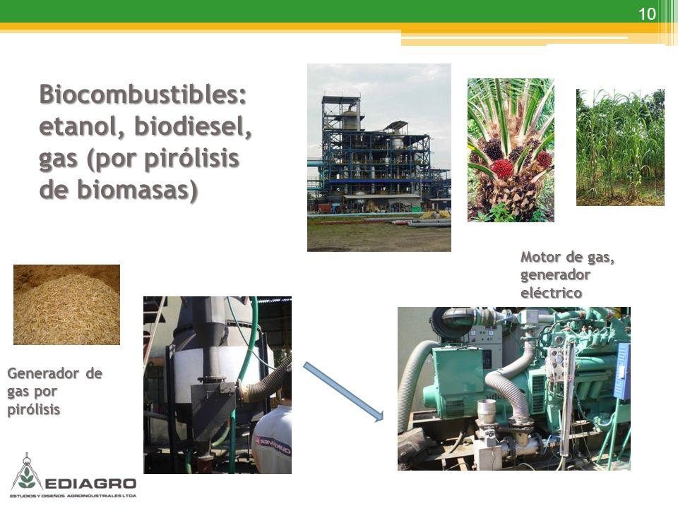 Biocombustibles: etanol, biodiesel, gas (por pirólisis de biomasas)