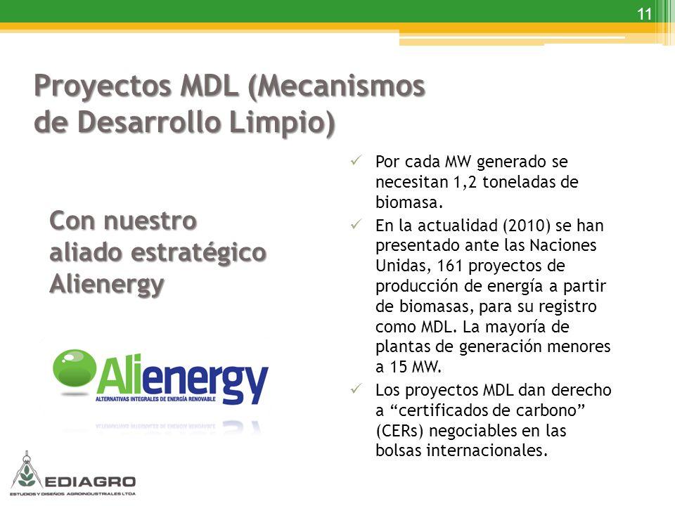 Proyectos MDL (Mecanismos de Desarrollo Limpio)