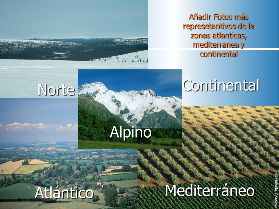 Continental Norte Alpino Mediterráneo Mediterráneo Atlántico