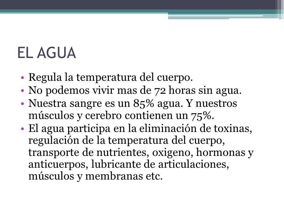 EL AGUA Regula la temperatura del cuerpo.