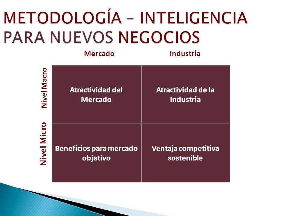 METODOLOGÍA – INTELIGENCIA PARA NUEVOS NEGOCIOS