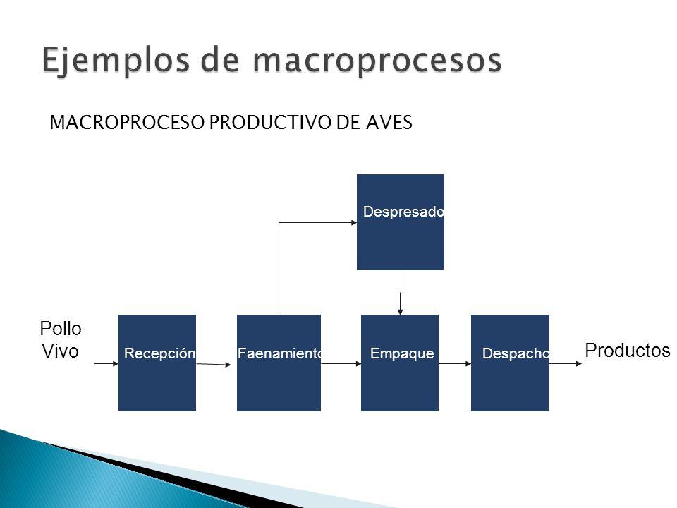 Ejemplos de macroprocesos