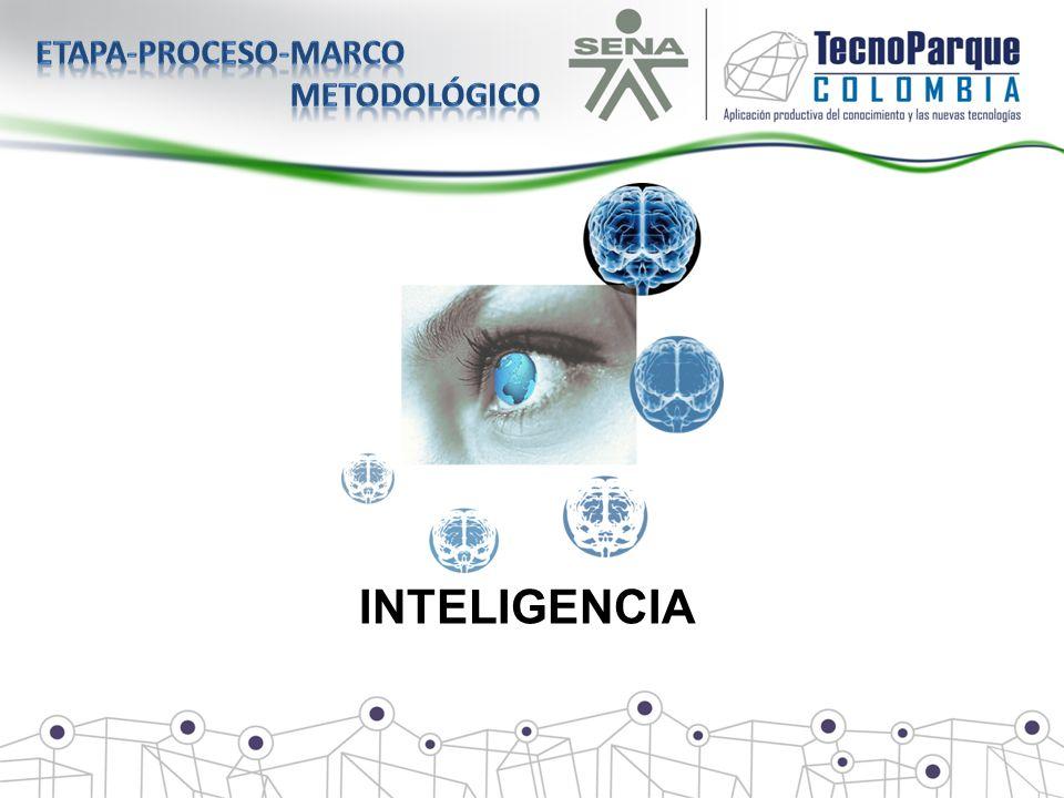 Etapa-proceso-marco metodológico INTELIGENCIA