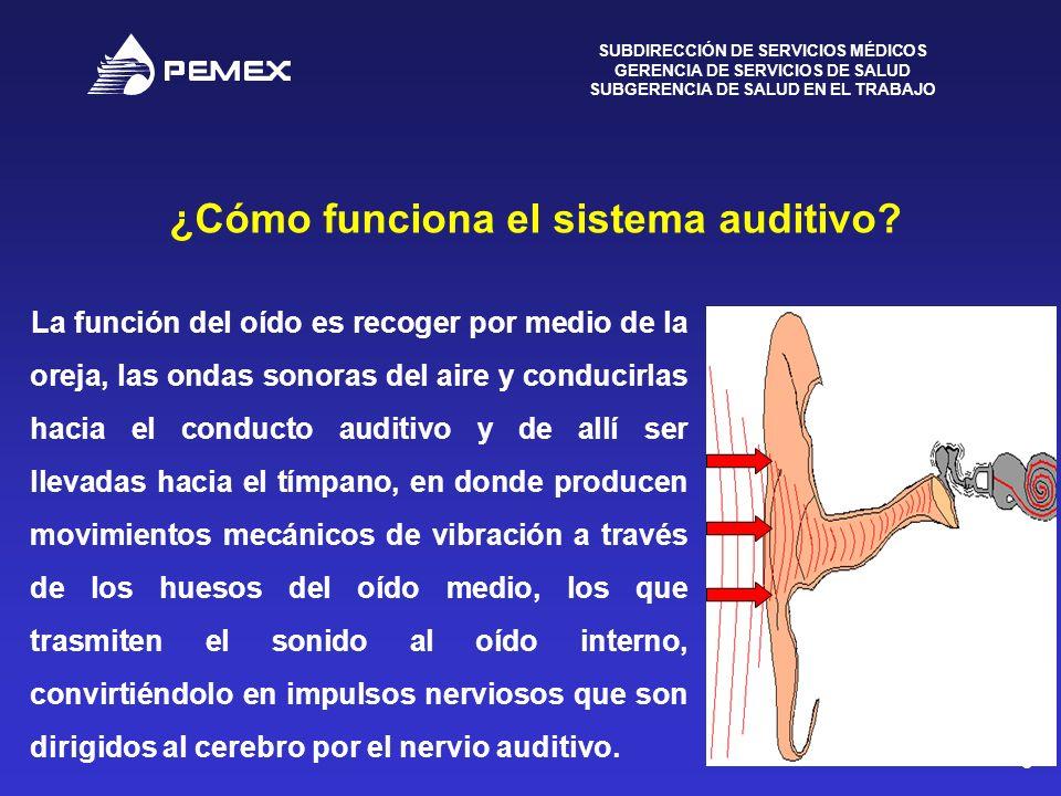 ¿Cómo funciona el sistema auditivo