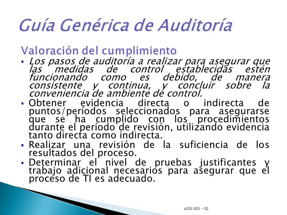 Guía Genérica de Auditoría