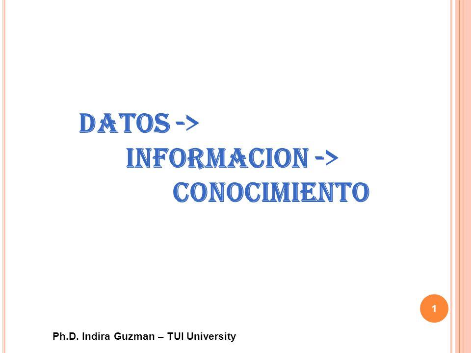 Datos -> Informacion -> Conocimiento