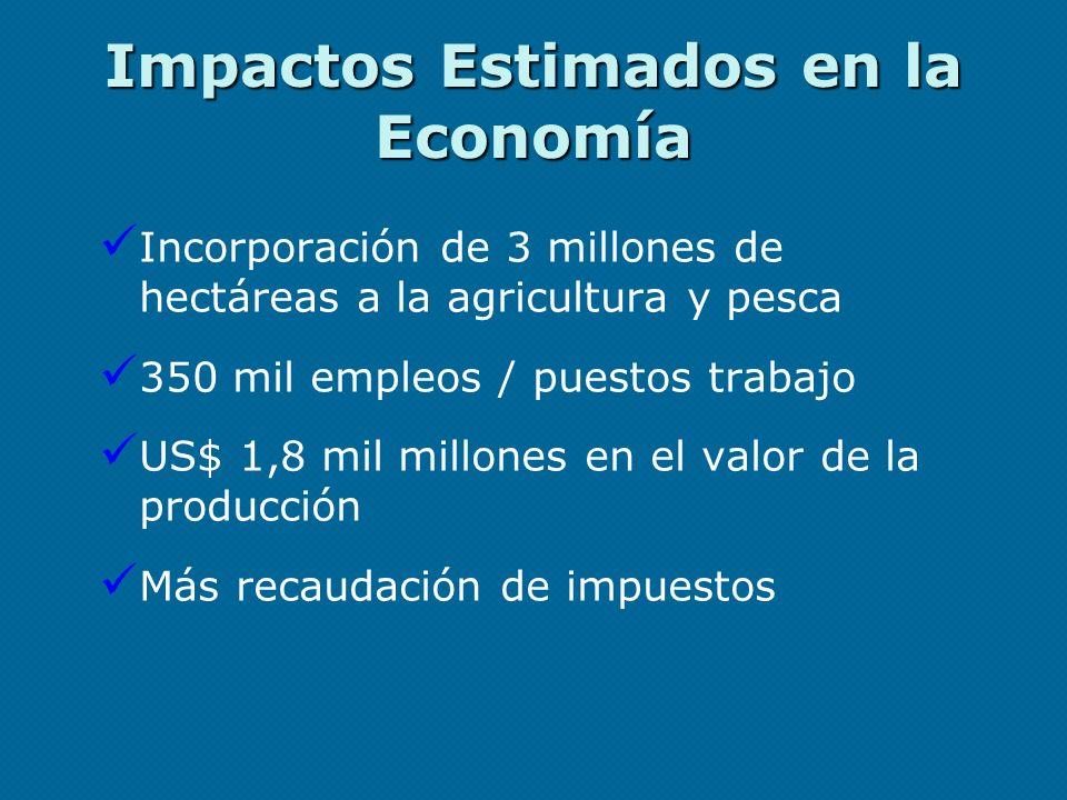 Impactos Estimados en la Economía